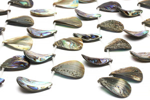 Abalone Shell Teardrop Beads Loose Natural Gemstone Jewelry Making Top Drilled