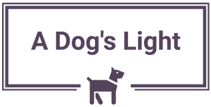 A Dog's Light