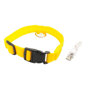 A Dog's Light - USB LED Dog Collar