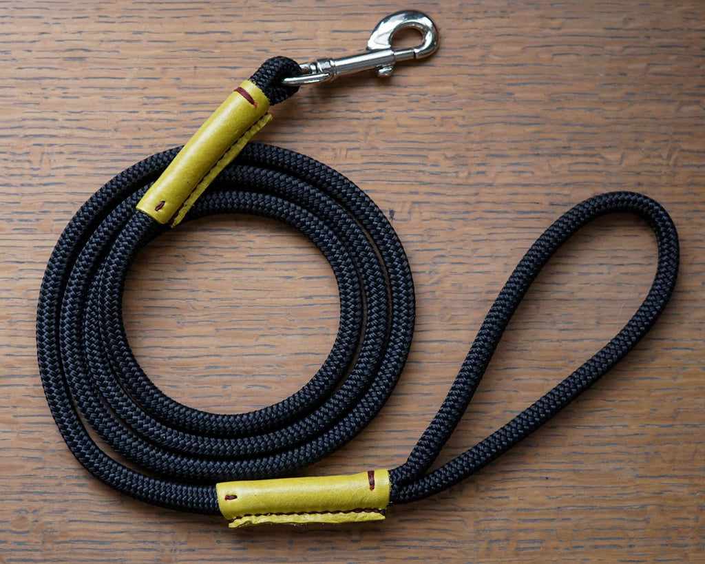 The Run in the Sun*-Dog Leash-[curren_alte_text]-WanderDog Designs