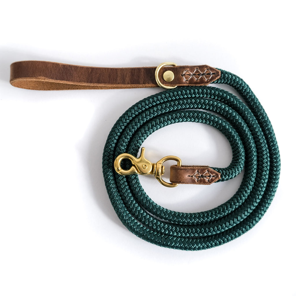 The Daily Adventure-Dog Leash-Ever Green-[curren_alte_text]-WanderDog Designs