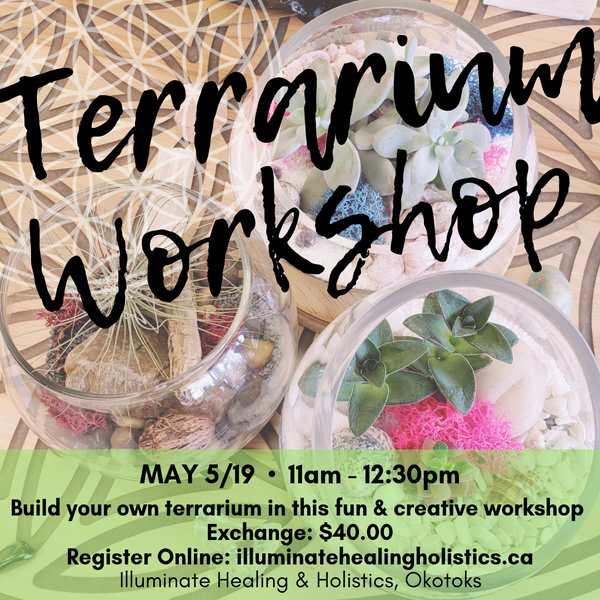 Terrarium Building Workshop