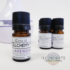 Lavendin Essential Oil - Crown Chakra - Alchemy Gold