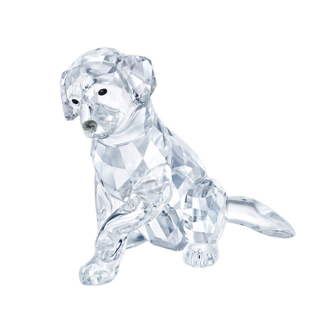 Swarovski Labrador Mother