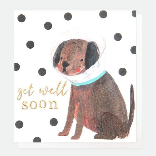 Painted Dog Get Well Soon Card - Caroline Gardner
