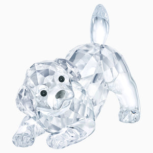 Swarovski Labrador Puppy Playing