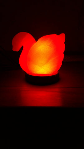 Himalayan Salt Swan Table Lamp
