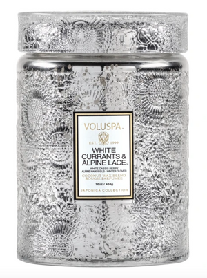 VOLUSPA WHITE CURRANTS & ALPINE LACE LARGE JAR CANDLE