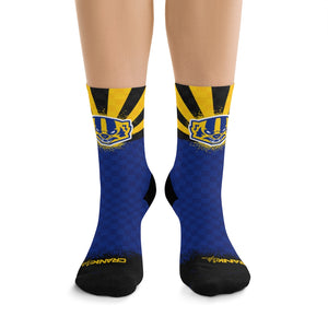 AZ Prescott PHS Badgers 3/4 MTB Socks