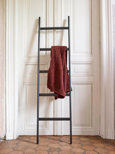 Load image into Gallery viewer, Mink towel ladder black