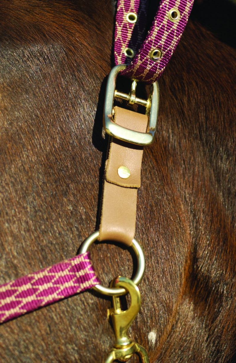 Centaur Leather Breakaway Fuse