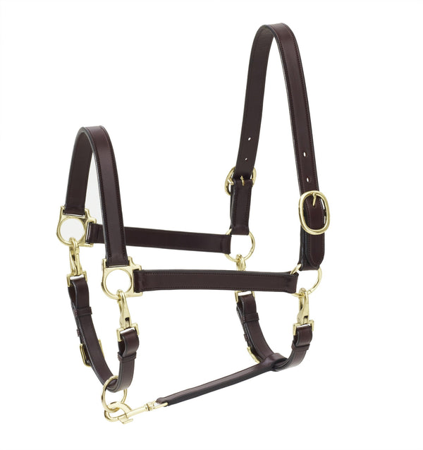 Ovation Elite 4-Way Grooming Halter