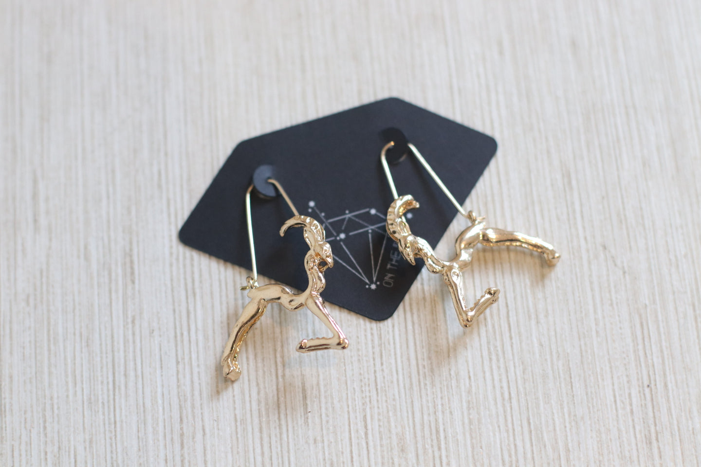 The Zodiac Earrings // Capricorn