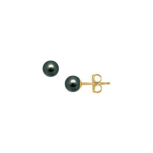 Akoya Cultured Pearl Stud Earrings : 14K Yellow Gold  5 MM