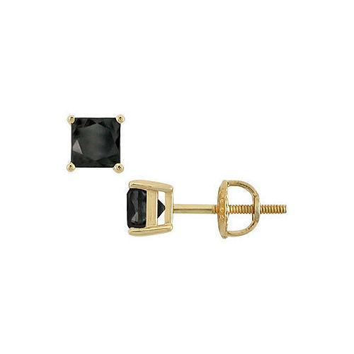 14K Yellow Gold : Princess Cut Black Diamond Stud Earrings  2.00 CT. TW.
