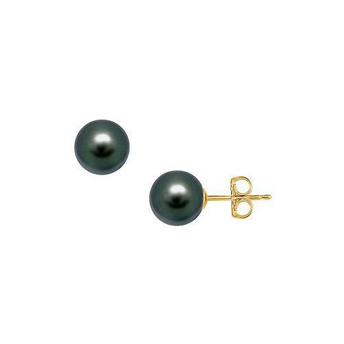 Tahitian Pearl Stud Earrings : 18K Yellow Gold  12 MM