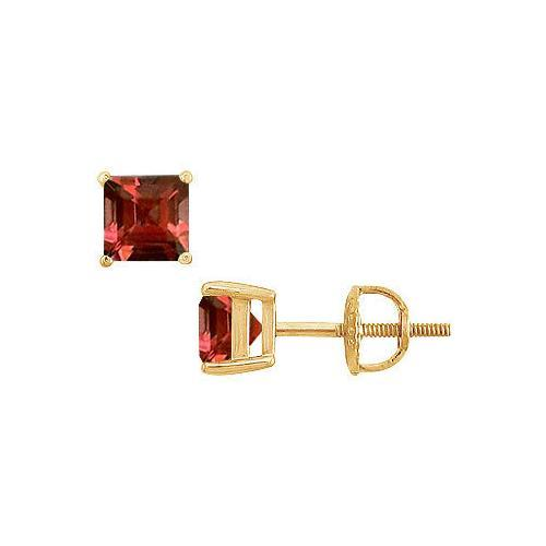 Garnet Stud Earrings : 14K Yellow Gold - 2.00 CT TGW