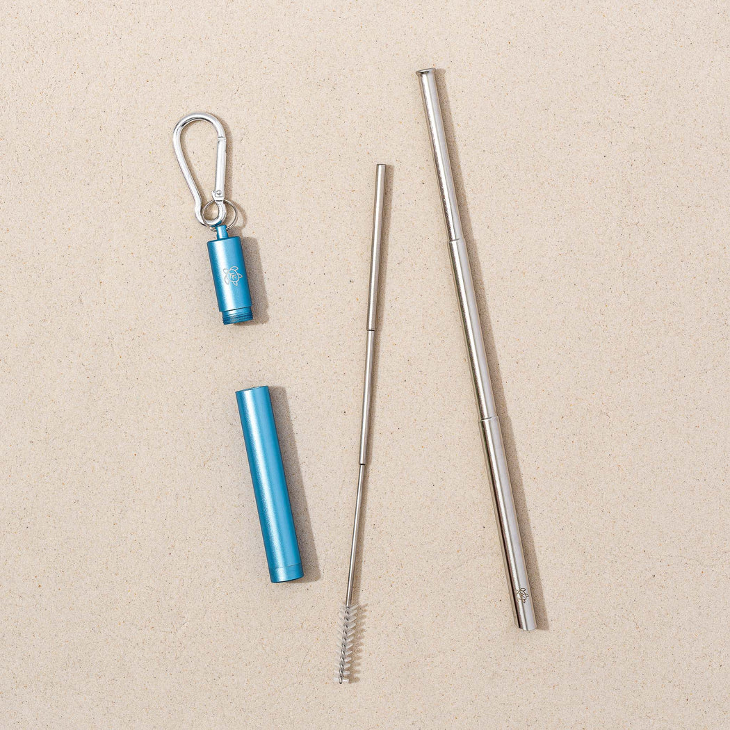 Dolphin Blue Telescopic Straw