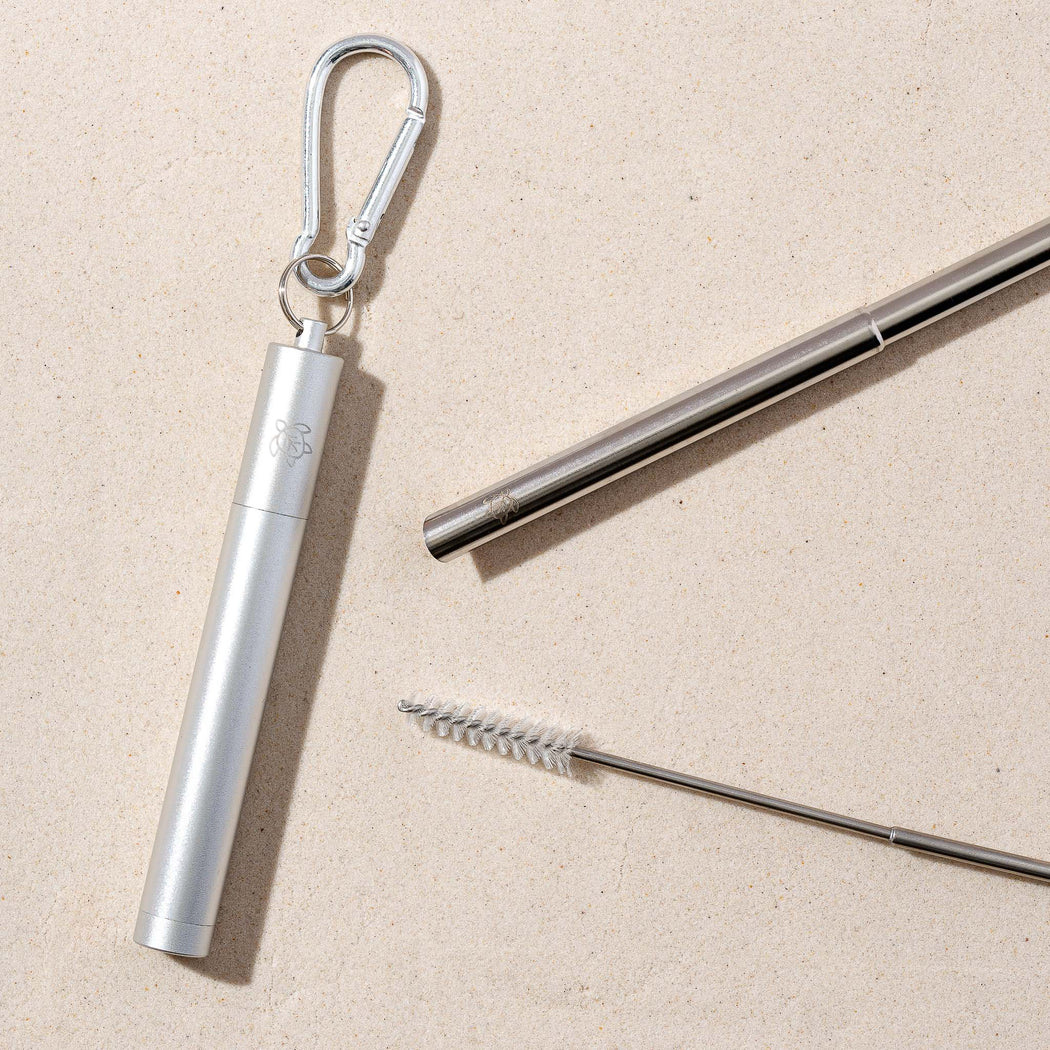 Pearl Silver Telescopic Straw