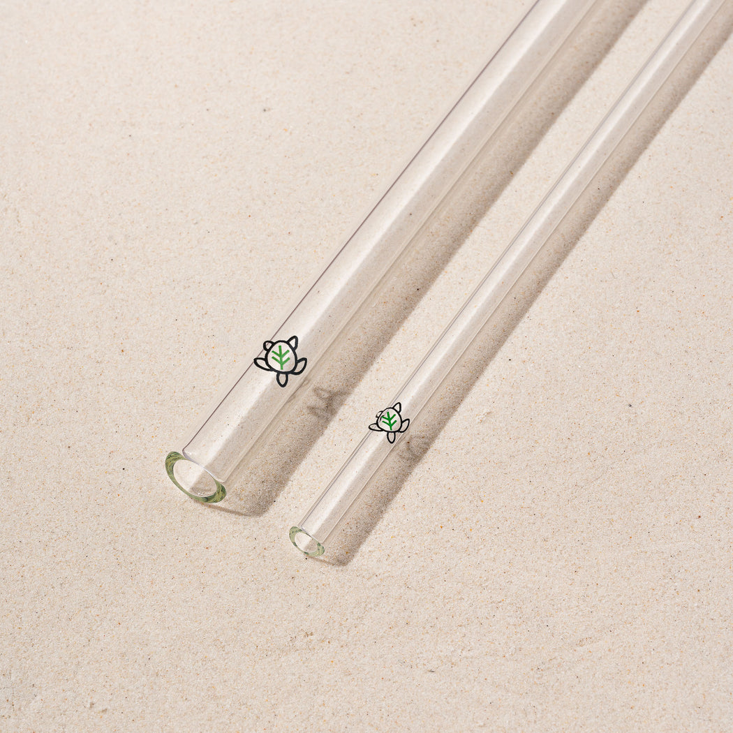 Clear Glass Turtle Pack (Wholesale)