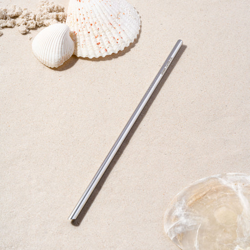 Silver Stainless Steel Regular Straw