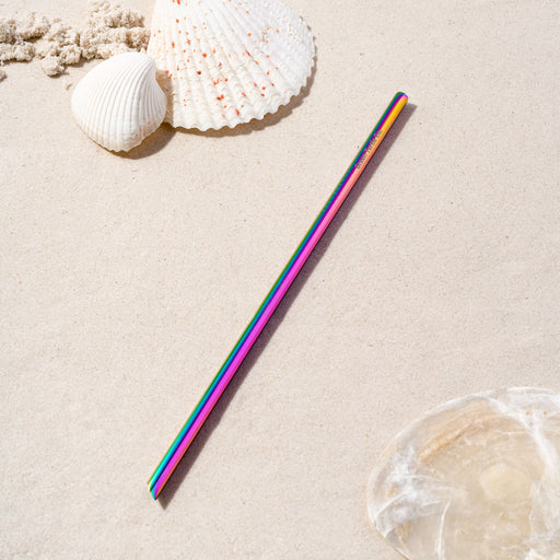Rainbow Stainless Steel Regular Straw