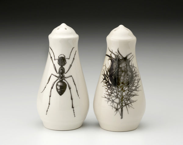 NEW! Black Beetle , Oak Leaf Salt and Pepper Shakers by Laura Zindel