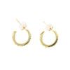 NEW! Moss Square Hoop Earrings by Branch
