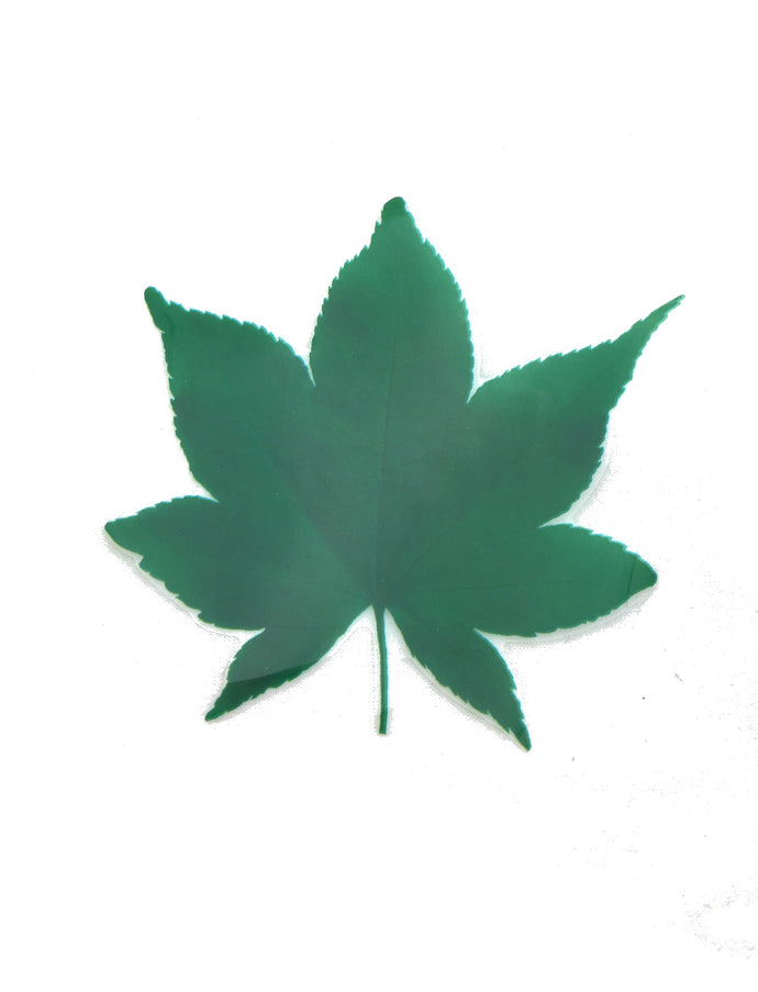 Table decoration Green Maple Leaf - ANP