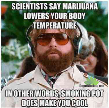 zach marijuana makes you cool lowers your body temp dope clothes marijuana clothing clothes