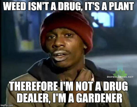 dave chappelle show the chappelle show weed isnt a drug meme its a plant hah laugh