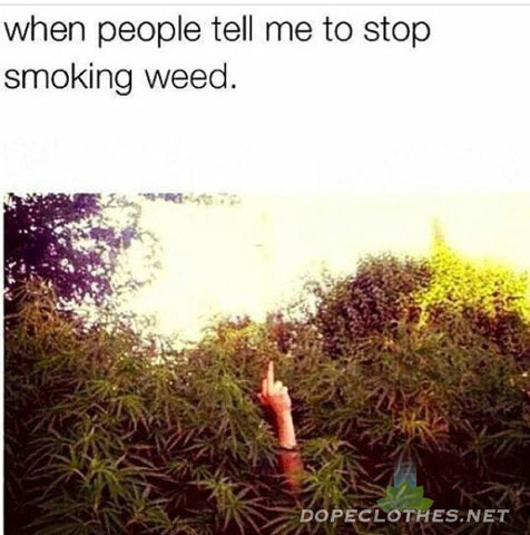 when people tell me to stop smoking weed middle finger flip you off stoner meme