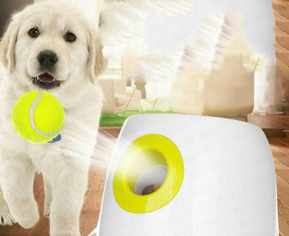 Doggy Interactive Ball Launcher- Save Your Arm!