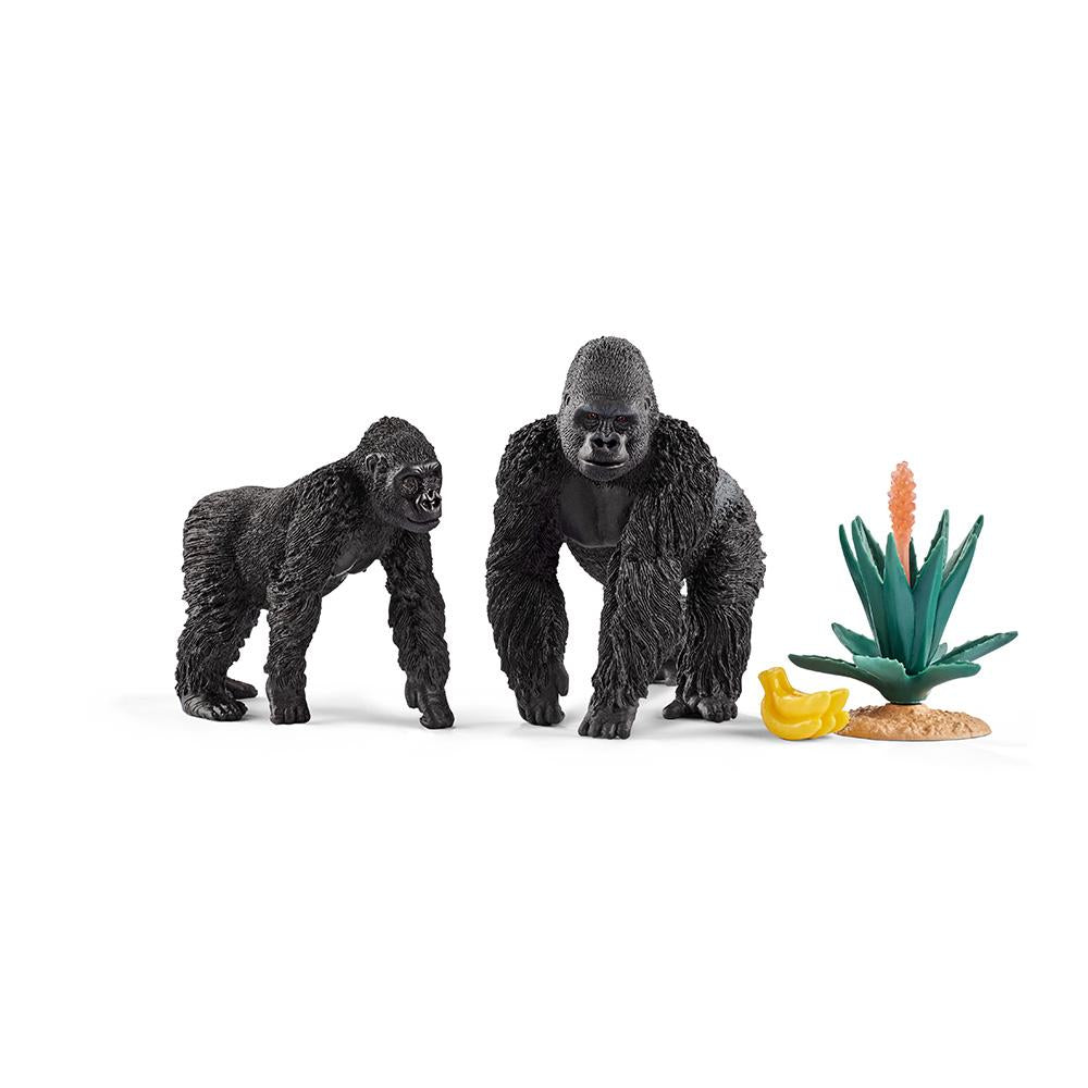Gorillas Foraging