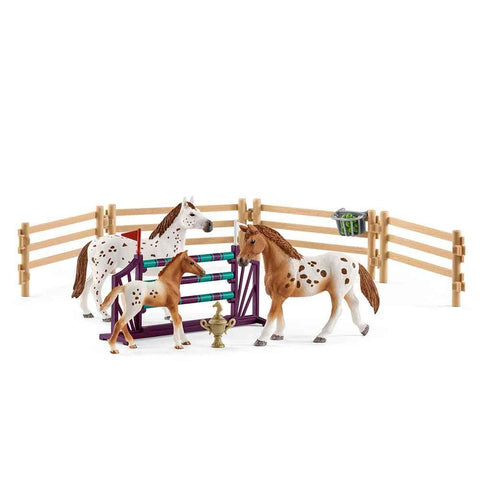 Tournament Training Set & Appaloosa Horse