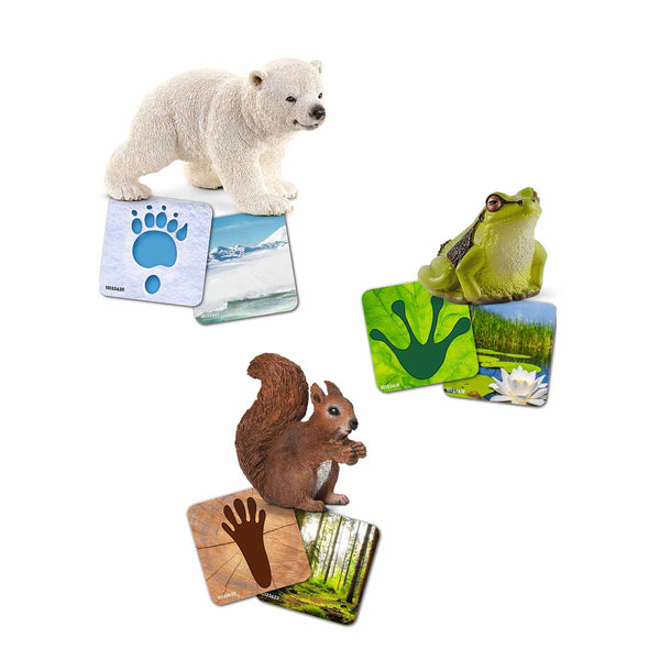 Schleich Wild Life flash cards