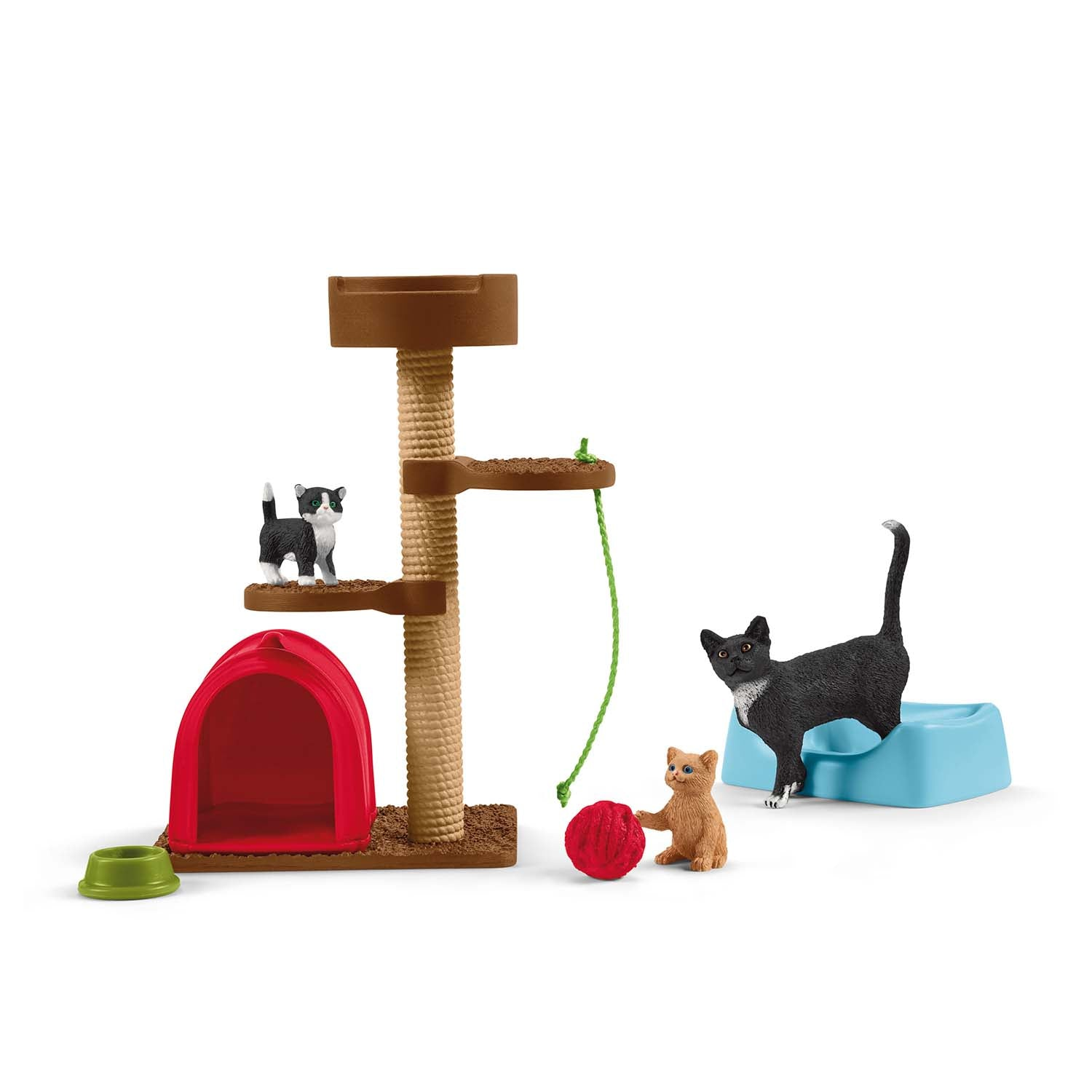 Playtime for cute cats