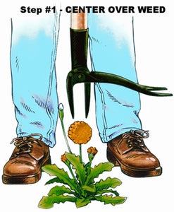 Center Grampa's weeder over the weed. Weed puller, dandelion puller, thistle puller. Get rid of weeds the easy way. The original weed killer.