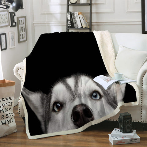 Peek-A-Boo Husky Throw Rug