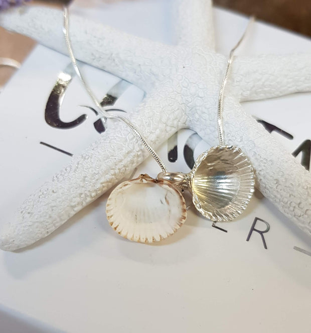 Cute Cockle Shell Necklace