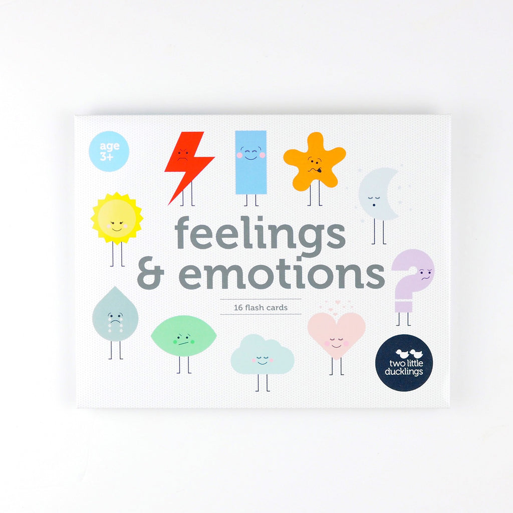 FEELINGS & EMOTIONS FLASH CARDS