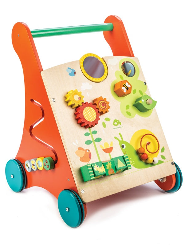 BABY ACTIVITY WALKER - TENDER LEAF TOYS