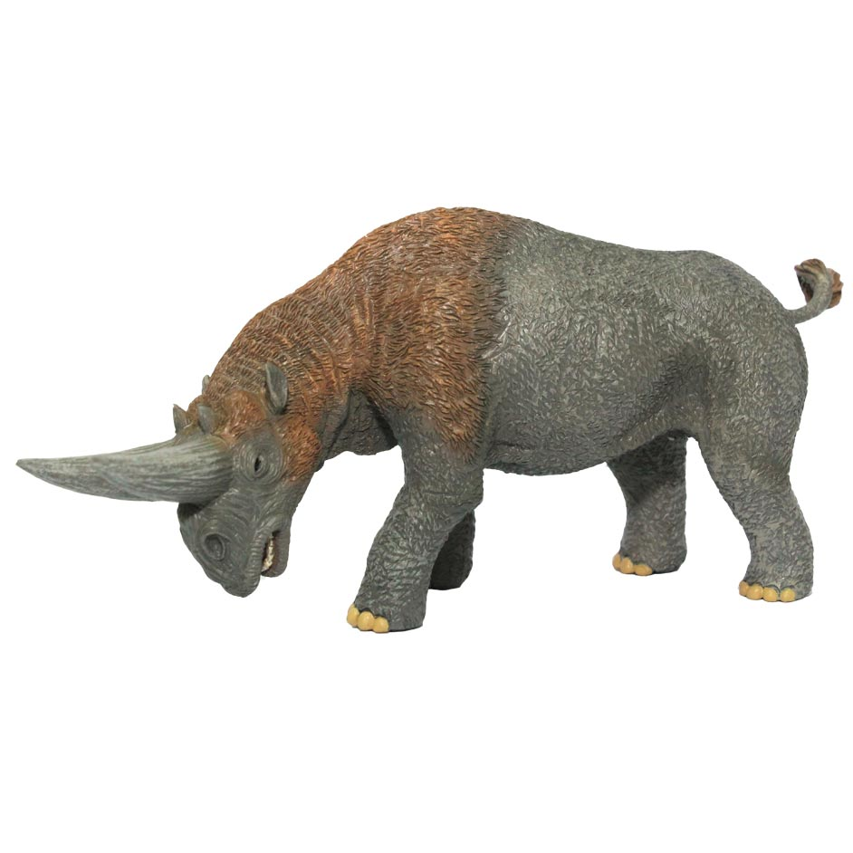 COLLECTA ARSINOITHERIUM