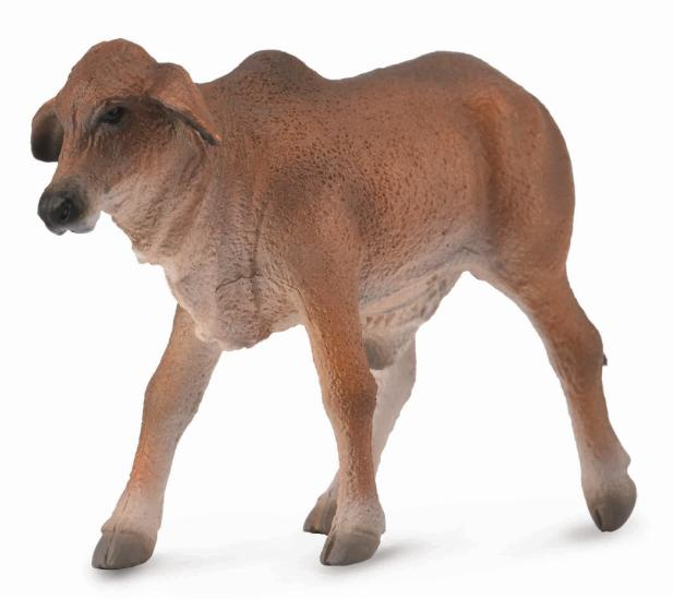 COLLECTA BRAHMAN CALF RED