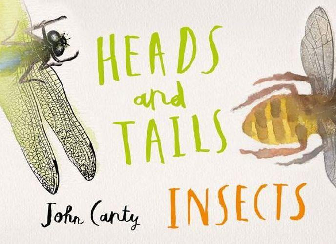 HEADS AND TAILS INSECTS - JOHN CANTY