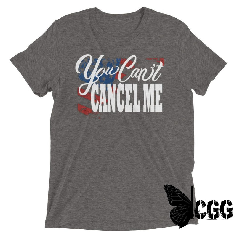 You Cant Cancel Me Tee Grey Triblend / Xs