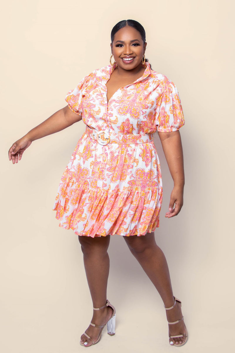 Paisley Skater Dress - Curve