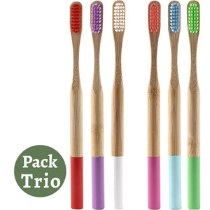 Pack Trio Brosses à Dents en Bambou Colorées - Brosses à Dents Bambou