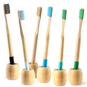 Supports Bambou pour Brosses à Dents - Brosses à Dents Bambou