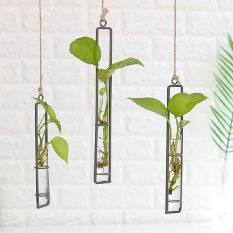 Hanging Glass Tube Vase